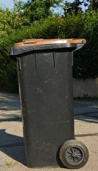 Müllbereitstellung in Eberswalde für Gewerbe und Privat